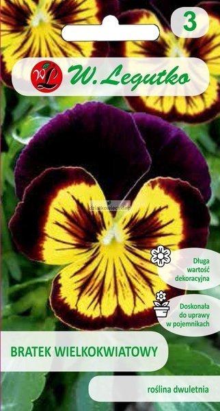 Bratek wielkokwiatowy -brązowy z żółtą plamą (0,4 g)