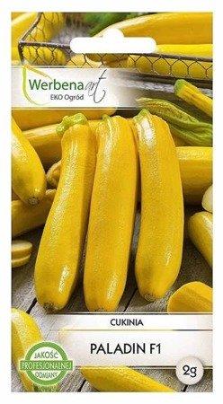 Cukinia Paladin (Cucurbita pepo L) 2g