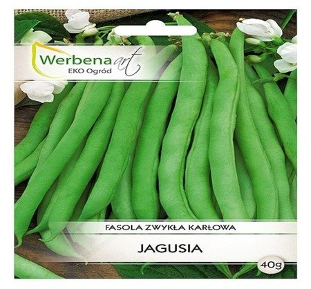 Fasola zwykła - karłowa Jagusia (Phaseolus vulgaris L.) 40g