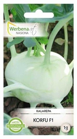 Kalarepa biała Korfu 1g