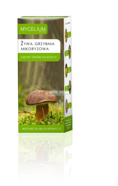 Mikoryza Grzyby Drzew Iglastych 250 ml