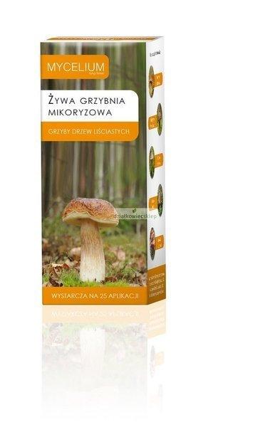 Mikoryza Grzyby Drzew Liściastych 250 ml