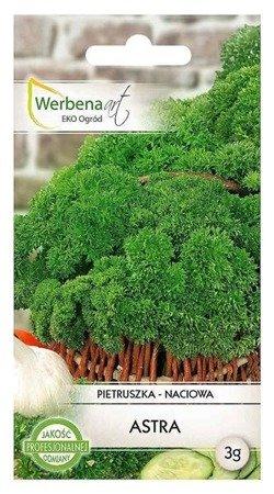 Pietruszka naciowa Astra (Petroselinum crispum) 3g