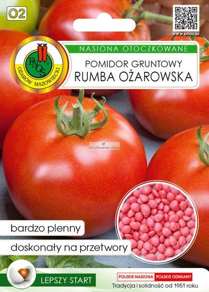 Pomidor Rumba Ożarowska (100 nasion)  - nasiona otoczkowane
