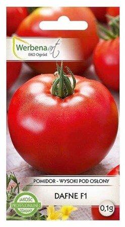 Pomidor wysoki pod osłony Dafne mieszaniec (Solanum lycopersicum L.) 0,1g