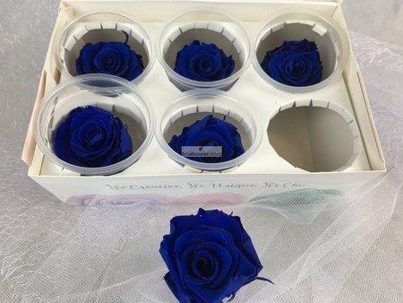 Róże wieczne (granatowe) 5 cm