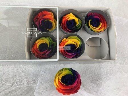 Róże wieczne (kolorowe) 5 cm