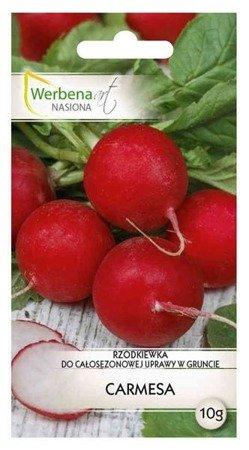 Rzodkiewka Carmesa - 10 g