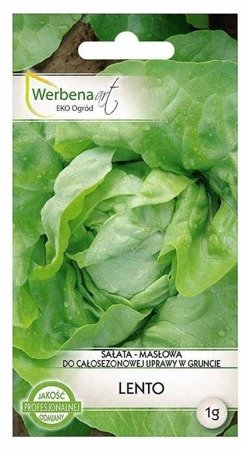 Sałata masłowa Lento (Lactuca sativa L.) 1g