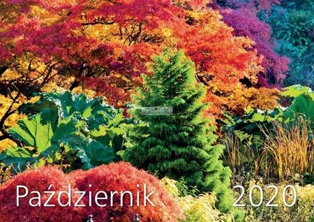 Ścienny Kalendarz Biodynamiczny 2020