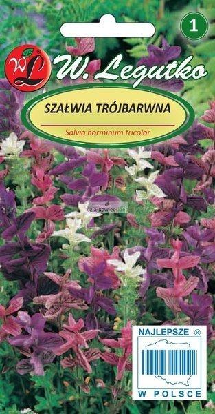 Szałwia trójbarwna - mieszanka (0,5 g)